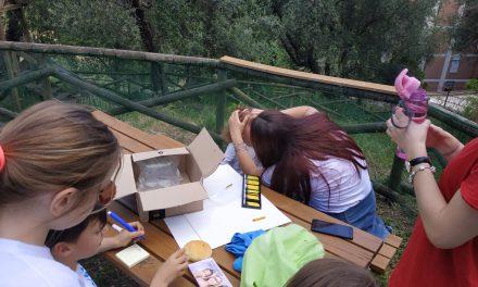 Nuove strutture per riqualificare l'Elce Kids Park di Perugia