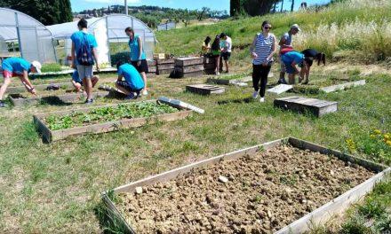 Dai work-lab ai giochi: dopo l'esperienza estiva Teens Week diventa attività formativa per le scuole