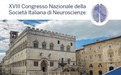 Come funziona il cervello? A Perugia con il Premio Nobel Eric Kandel, esperti e ricercatori