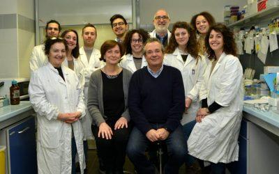 Sviluppo del tumore, la nuova scoperta dei ricercatori dell'Università di Perugia