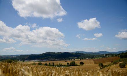 La Fondazione aderisce al progetto AGER – AGroalimentare E Ricerca